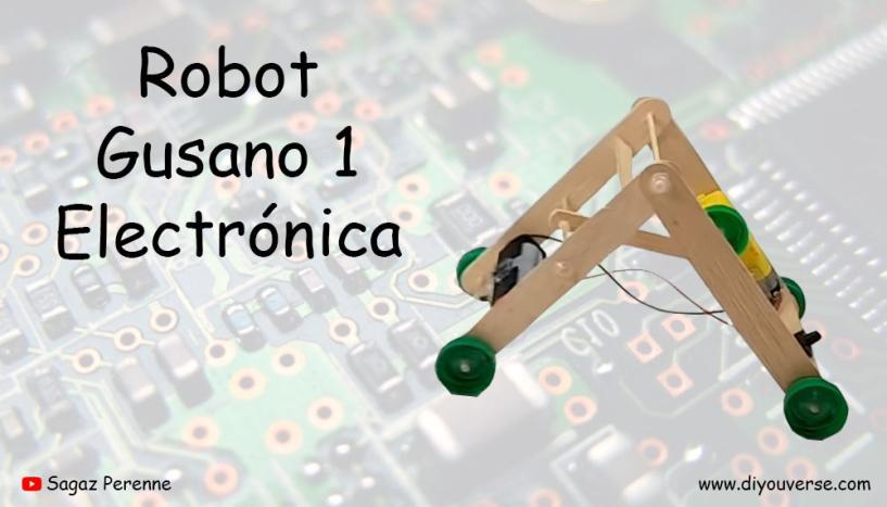 Robot Gusano 1 Electronica