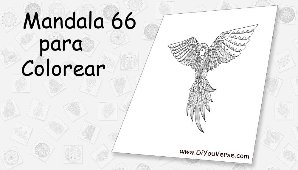 Mandala 66 Para Colorear