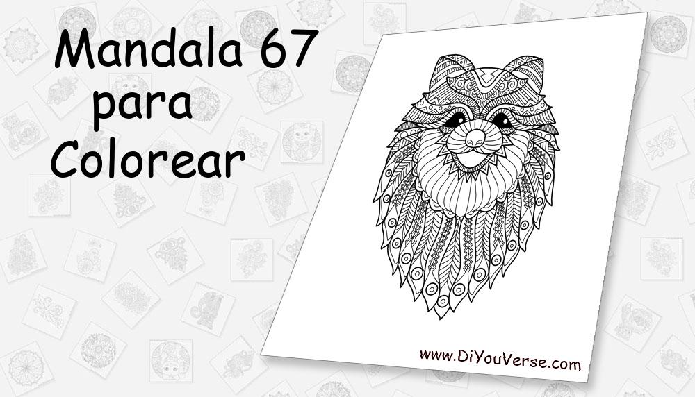 Mandala 67 Para Colorear